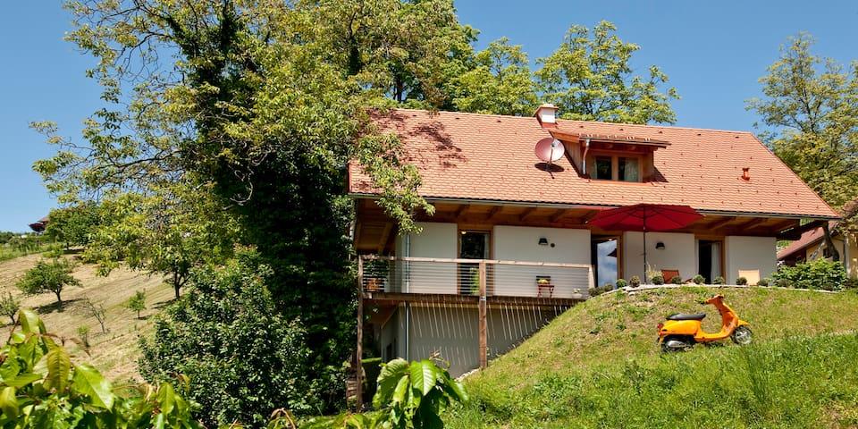 PURESLeben Winzerhaus Sausal - Pistorf - Dům