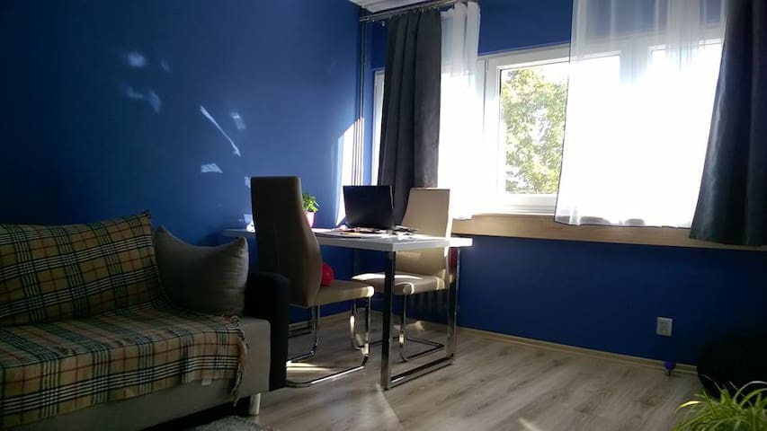 Modern room for rent - Łódź - Daire