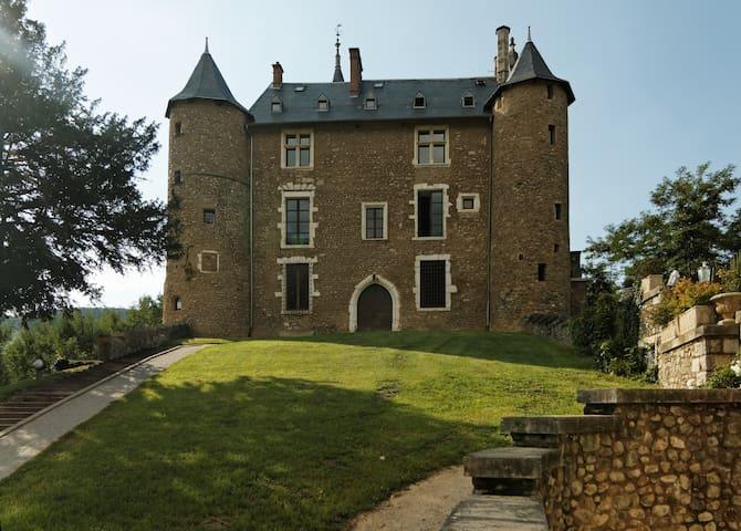 Séjour Romantique -Château Médiéval - Saint-Martin-d'Uriage - Lejlighed