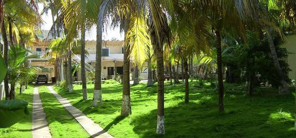 Appartement-Posada Alemania Caribe - Chichiriviche - Condominio