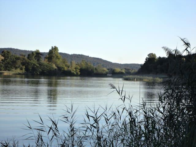 appartamento vista lago - Biandronno - Apartment