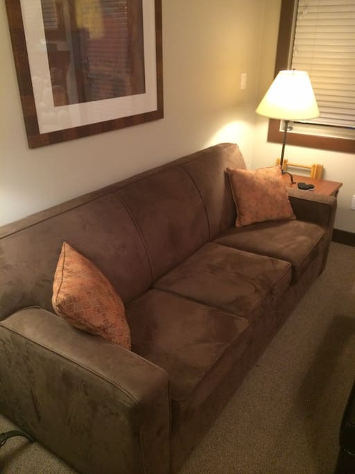 Fold out couch in living room