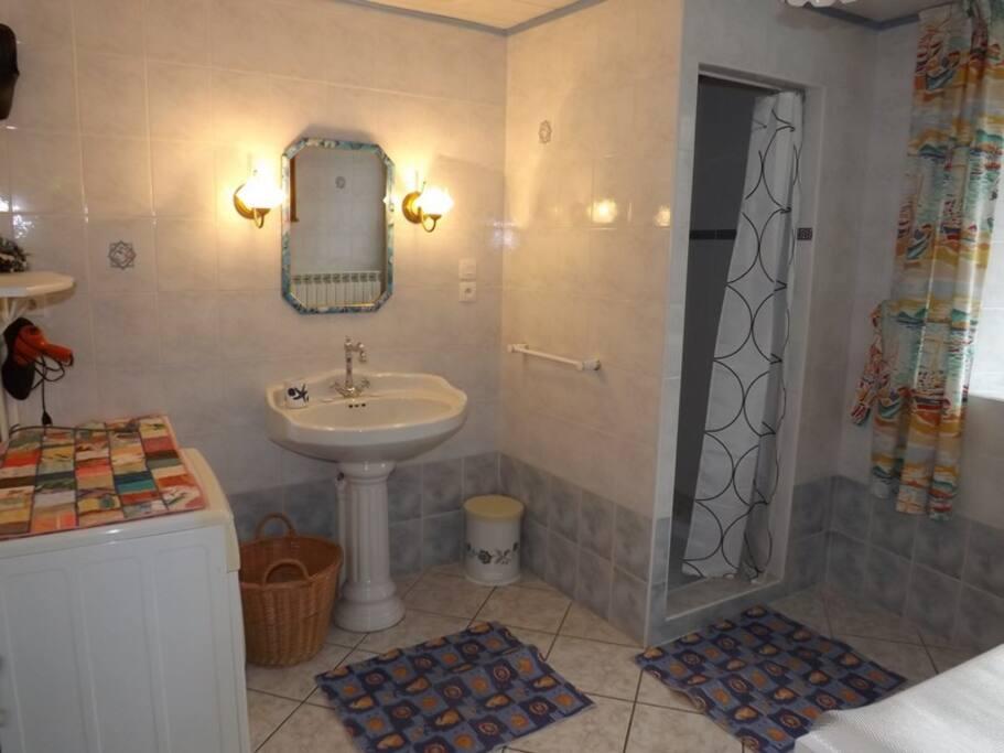 Salle de douche spacieuse avec lave linge