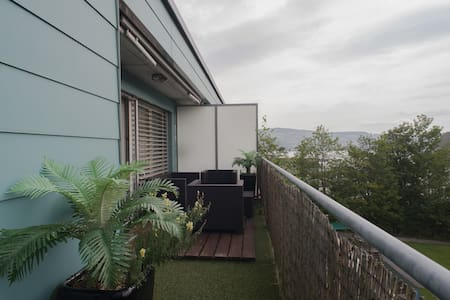 Stunning Lake View, Bright&Airy Apt - Horgen
