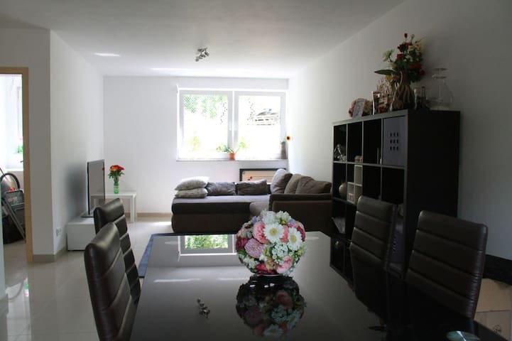 SAP/Heidelberg City Apartment - Wiesloch - Apartment