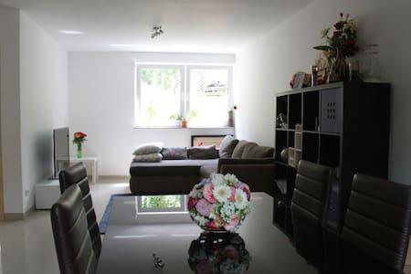 SAP/Heidelberg City Apartment - Wiesloch