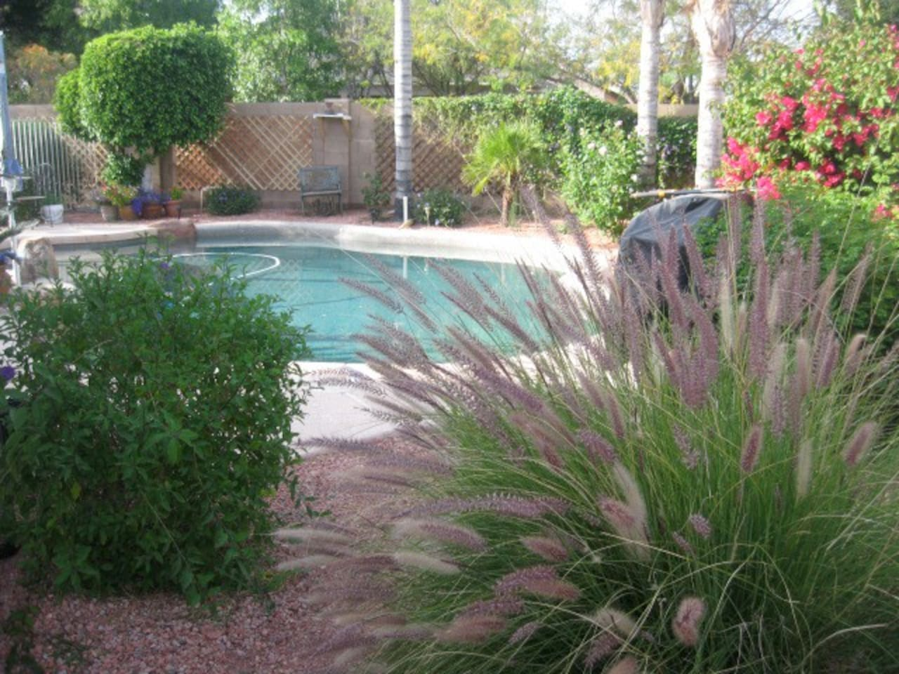 Non heated swimming pool. An ideal place to sunbath and relax.