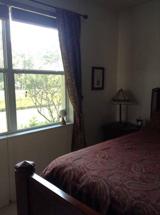 Room has lovely view of canal, forest and hiking trail