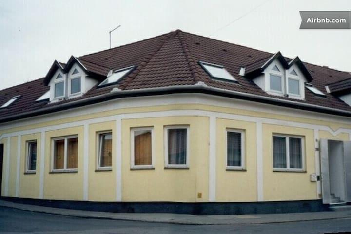 Apt in downtown Eger - Main Attic