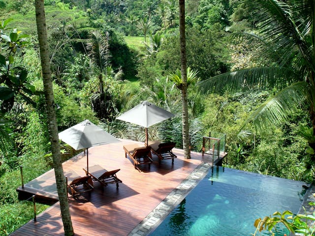 Villa Kalisha - Totally Renovated Nov 2016 - Ubud - Villa