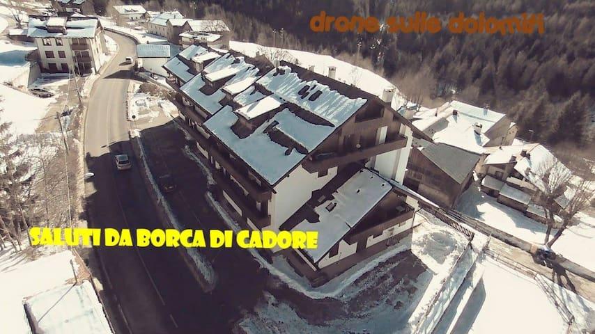 APPARTAMENTO  IN BORCA DI CADORE - LOCALITA' Cancia DI BORCA DI CADORE  - Apartamento