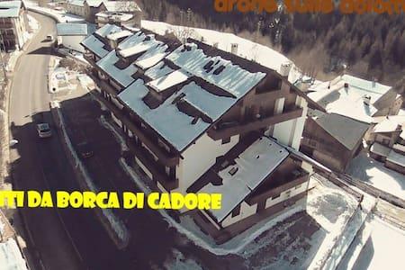 APPARTAMENTO  IN BORCA DI CADORE - LOCALITA' Cancia DI BORCA DI CADORE