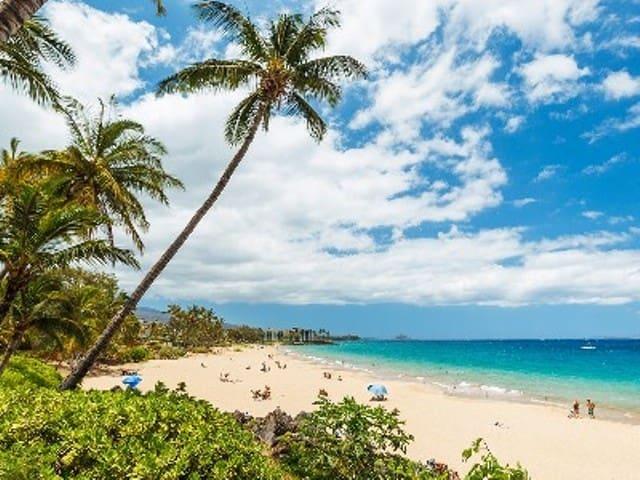 Maui Vista Resort  Best Beaches! - Kihei