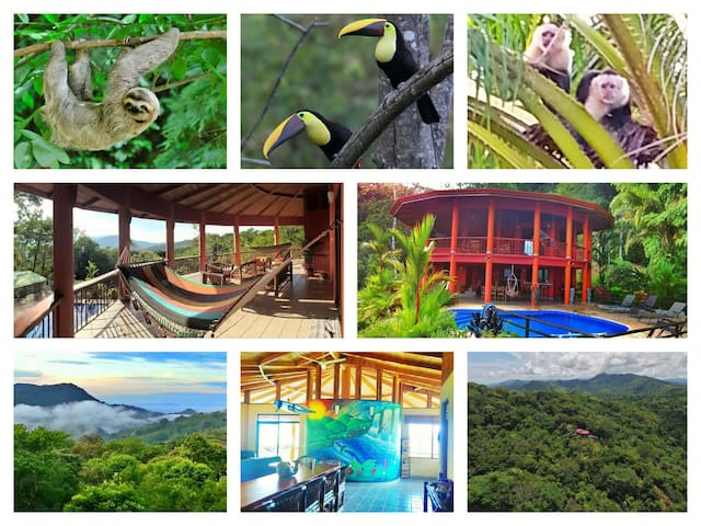 Monteverde meets Montezuma, one destination!