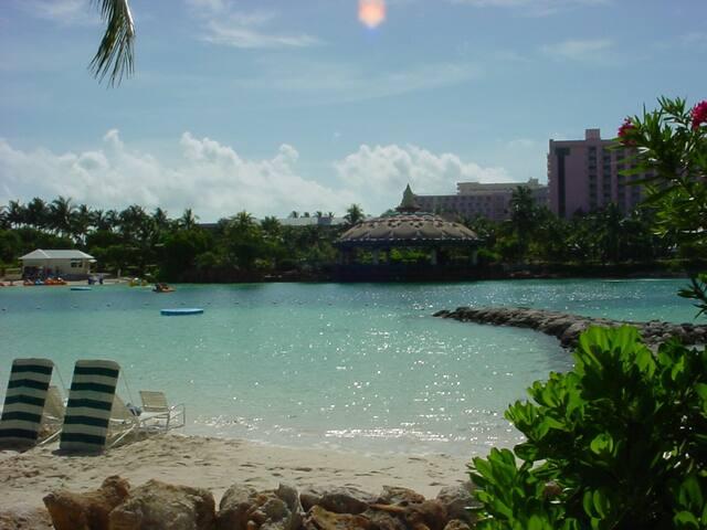 Harborside Resort Atlantis, Bahamas - Nassau - Appartement