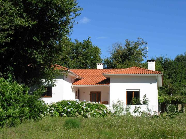 Casa das Hortensias - Enjoy nature
