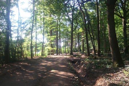 Forêt de troncais à 2 pas - Ainay-le-Château - Casa