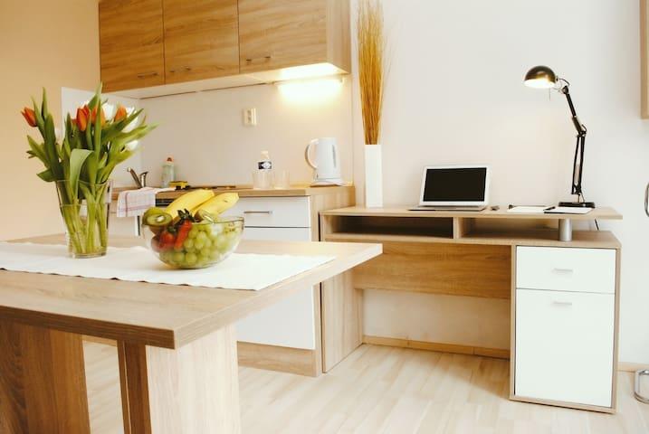 Cute Studio near Mendlovo namesti - Brno - Apartment