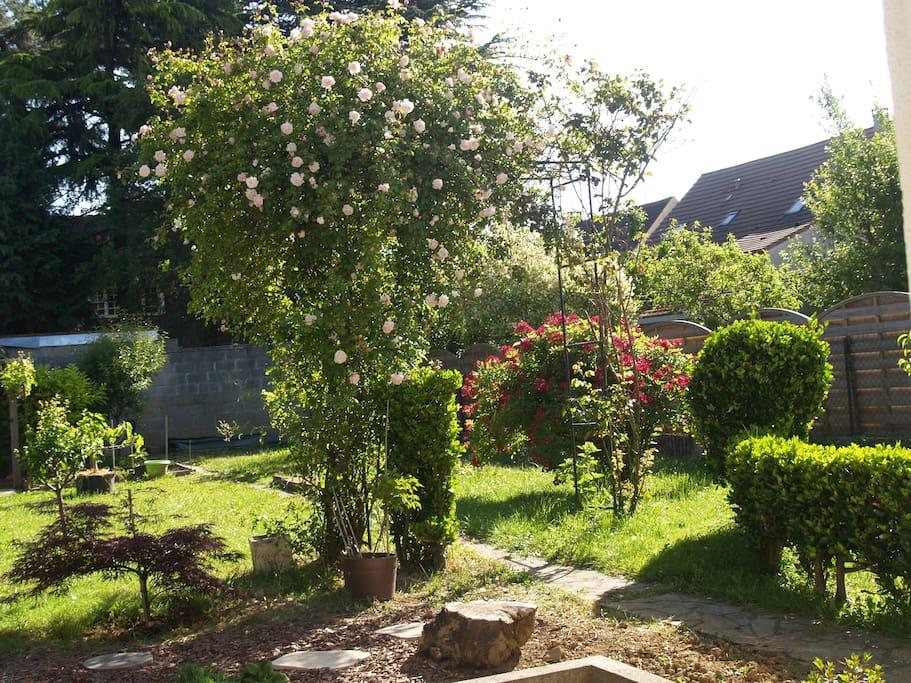 Maison en rez de jardin maisons louer morsang sur for Jardin a louer ile de france