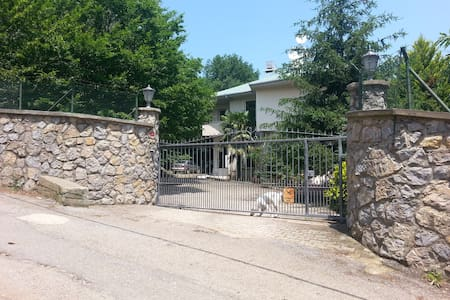 Villa with pool and garden - Beykoz - 别墅
