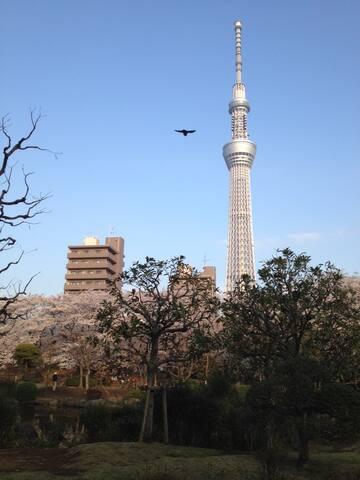 10 Min  to Asakusa, 5 Min  Skytree. - Sumida-ku - Appartement