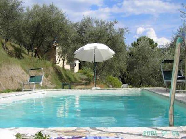 Bella casa con giardino e piscina.  - Camaiore - House