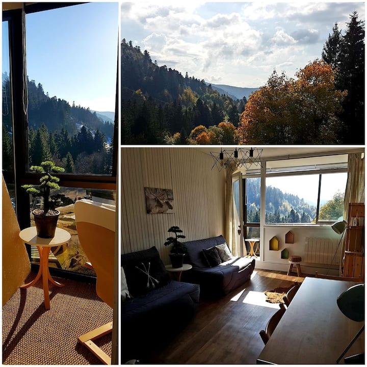 Appartement, ski/rando, pied des pistes, La Bresse