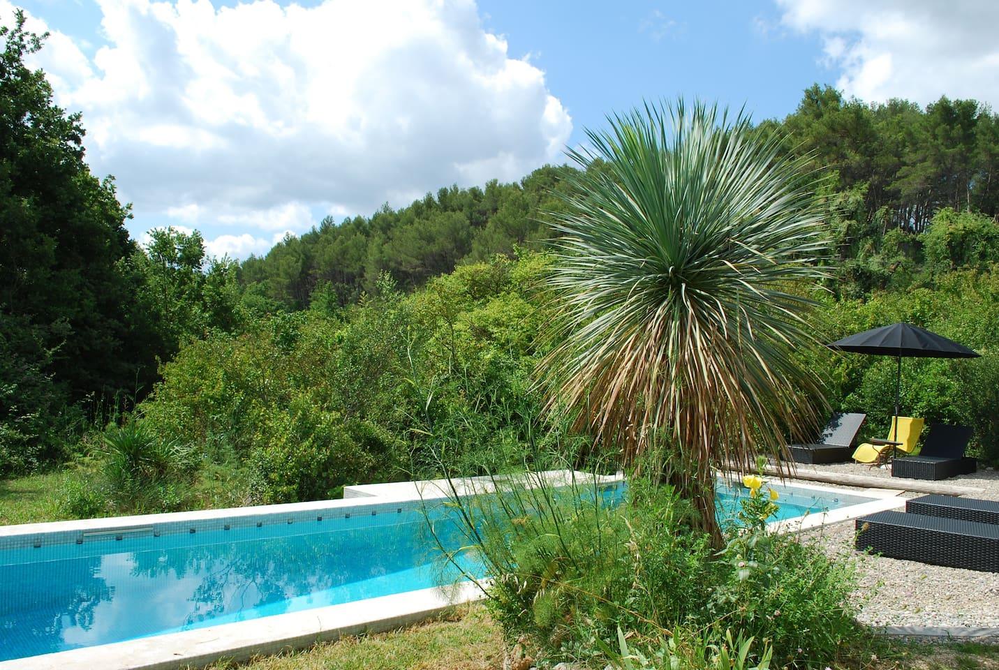 Accès privé à la piscine de nage 12X3 carrelée et sécurisée par alarme immergée sans aucun vis à vis. Aucune maison en vue. Pas de pollution visuelle et calme absolu.