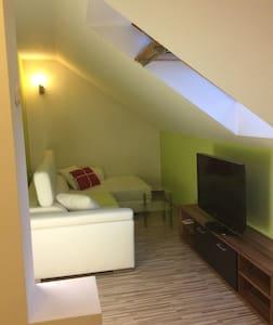 Cozy 1 bedroom apartment in center 🐕🐈🌈