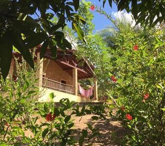 Experiência Rural no BrejoParaibano - Pilões