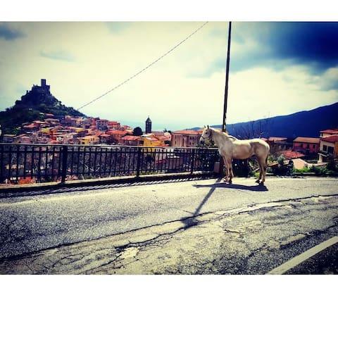 Casa nell'entroterra della Sardegna: Burgos (ss)