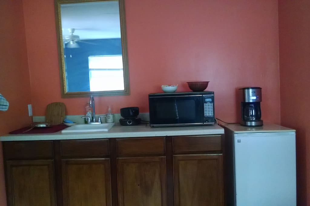Kitchen with microwave, fridge, coffee pot, sink, and hot plate.