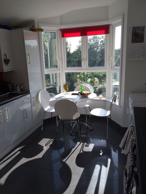 Modern kitchen with fridge, freezer, dishwasher, washing machine, radio and door into the backgarden