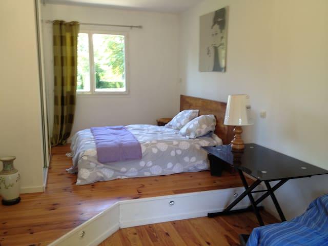 Chambre double avec un lit et un canapé lit (20m2)