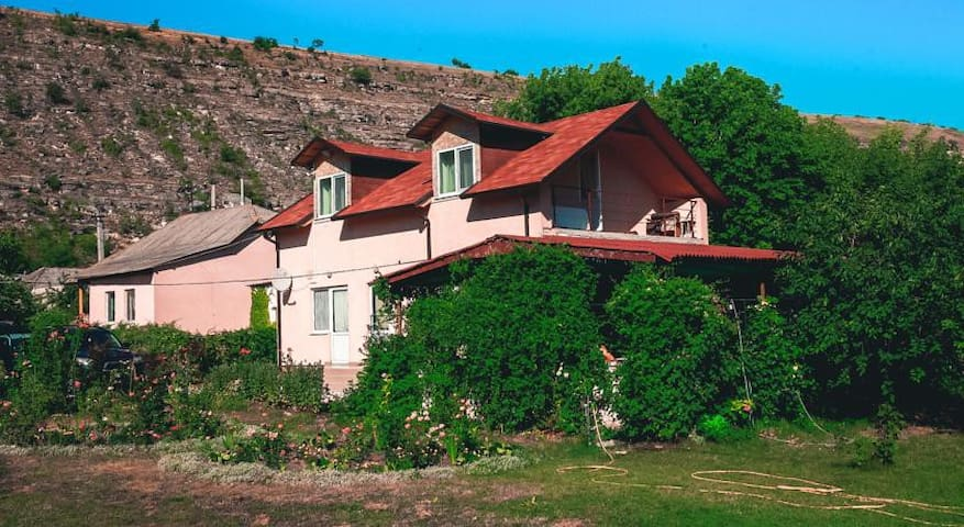 Vila Roz Guest House-Breakfast Incl - Trebujeni - Penzion (B&B)