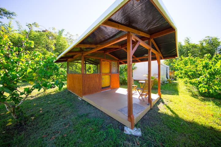 The Beautiful Milo Cabin #3