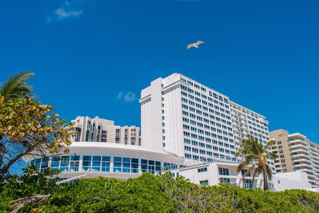 Two Bedroom Apartment Ocean View Apartments For Rent In Miami Beach Florida United States