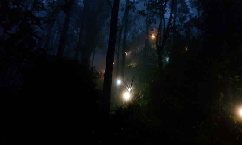 Clouds Land(Hidden Paradise) - Munnar - Aamiaismajoitus