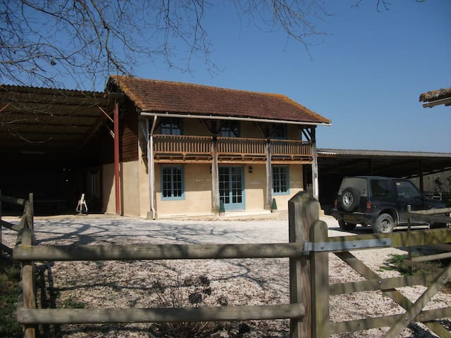 Renovated Barn in South West France - Manciet - Huis