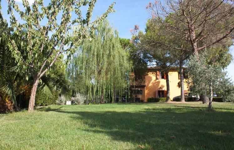 Il Colle di SanQuintino - San Miniato - Apartament