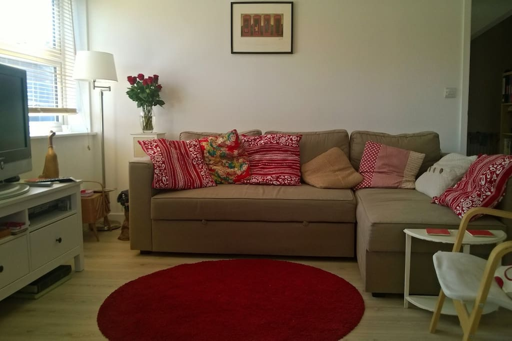 The well-decorated lounge is cosy, welcoming and relaxing. The large sofa transforms into a double bed.