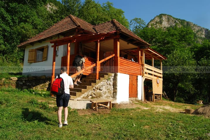 A remote house in mountains, - Sălciua - Dom