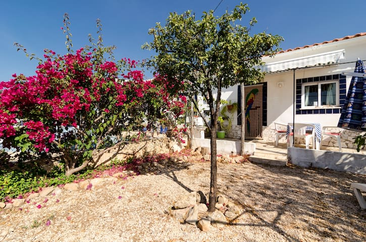 Serendipity villa sleeps 2/3 persons Rustic Garden - Silves - House