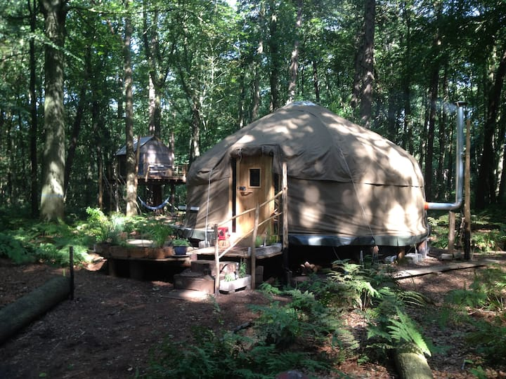 Forest Yurt near Bruges