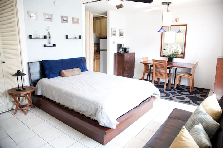 Penthouse Apartment Rent Vacation - カロリーナ - アパート