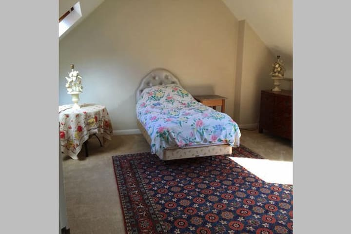 top floor very light & large room - Oxford - Bed & Breakfast