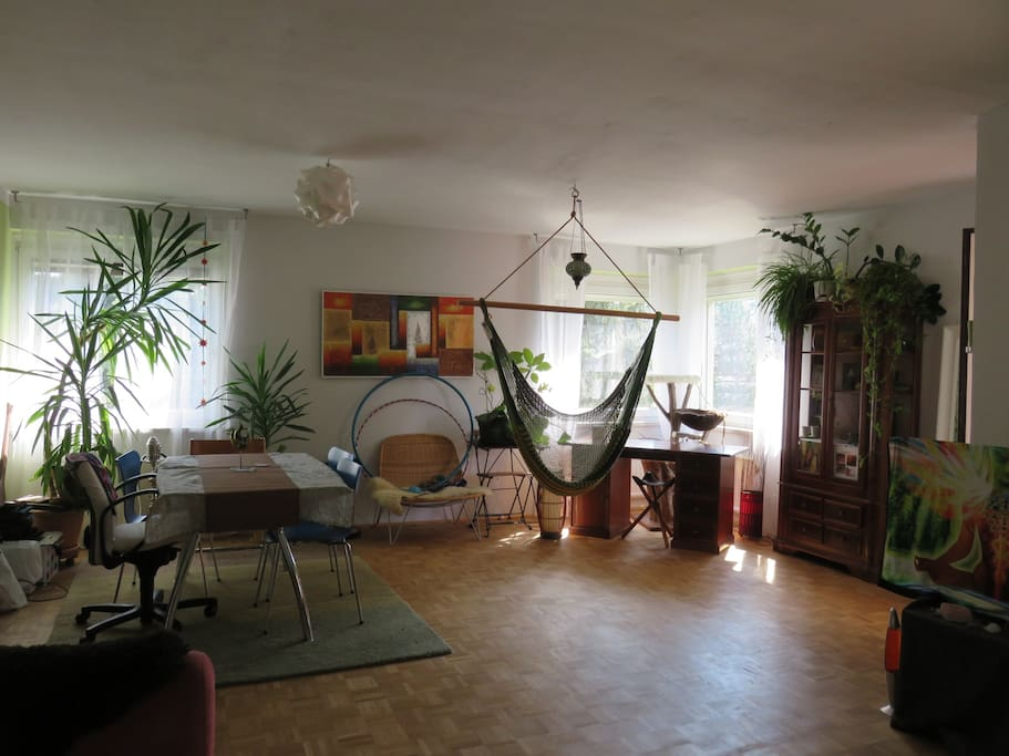 living room with homely hammock