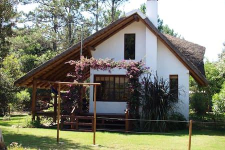Casa Picaflor near Playa Serena