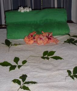 Remede Miracle Villa - Habaraduwa - Βίλα