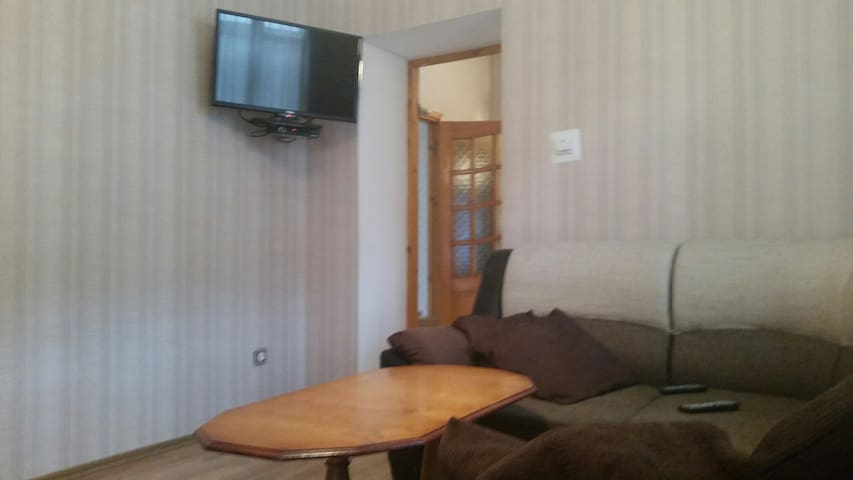 Chisinau center apartment-house (47 sq m)